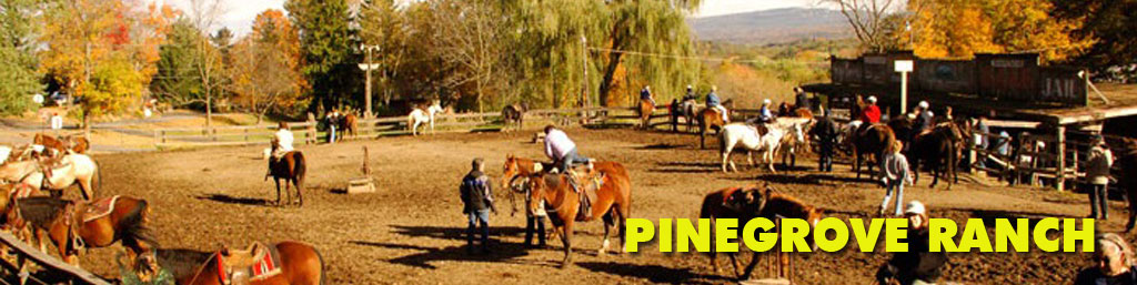 Pinegrove Ranch Logo